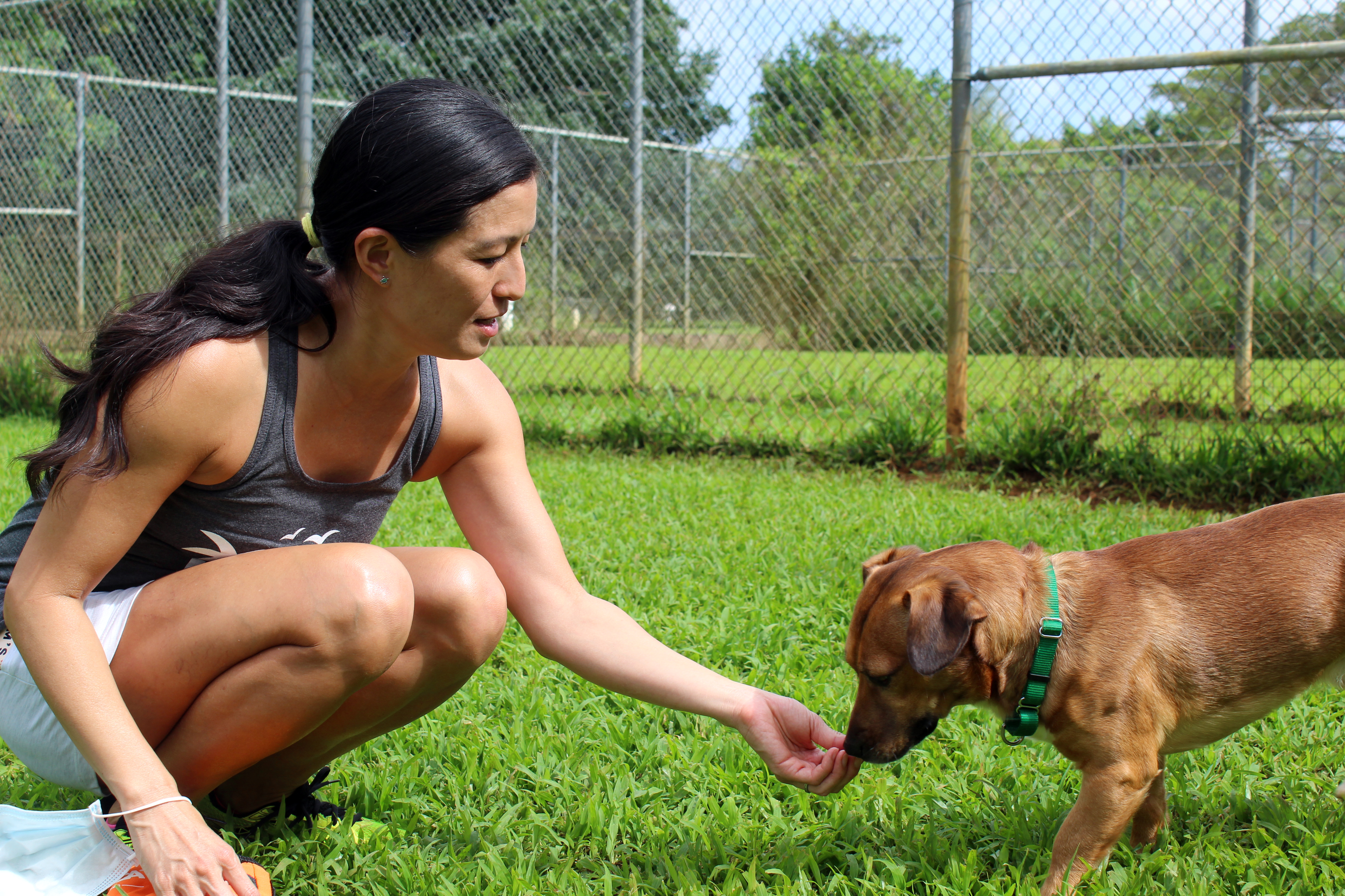 Lyn is the Kauai Humane Society's volunteer of the month.